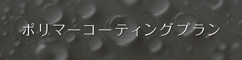 ポリマーコーティングプラン カービューティープロ115